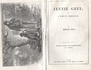 Image for Jennie Grey; or, A Woman's Vengeance