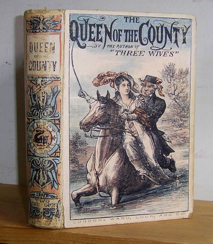Image for The Queen of the County (1865)
