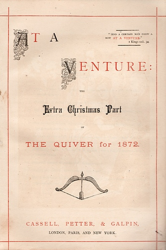 "Image for The Quiver. Extra Christmas Part for 1872: ""At a Venture"""