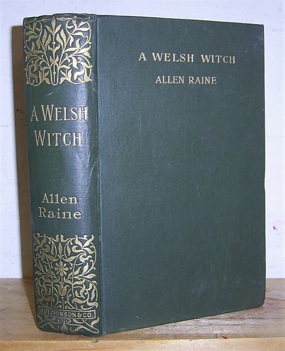 Image for A Welsh Witch A Romance of Rough Places (1896)