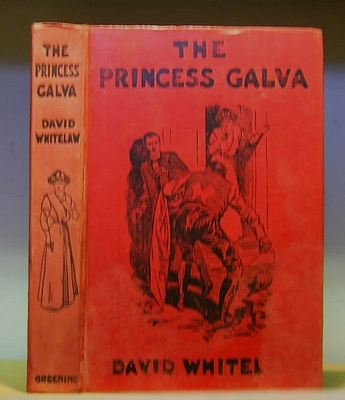 Image for The Princess Galva. A Romance (1910)