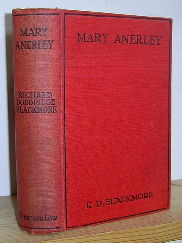 Image for Mary Anerley, A Yorkshire Tale