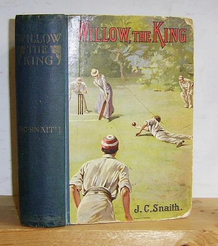 Image for Willow the King The Story of a Cricket Match (1899)